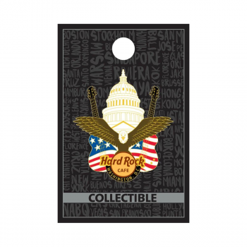 Washington, DC Eagle Guitars Pin