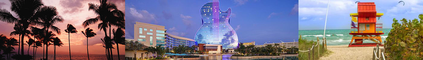 Hard Rock Hollywood, FL Collection